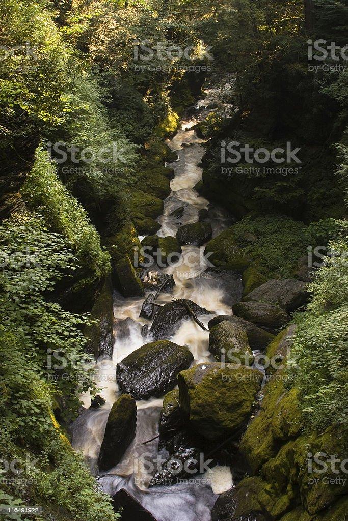 Waterfall: Bushkill Falls stock photo