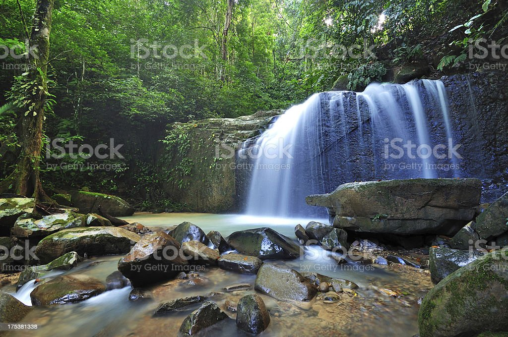 Waterfall in a Borneo Jungle royalty-free stock photo