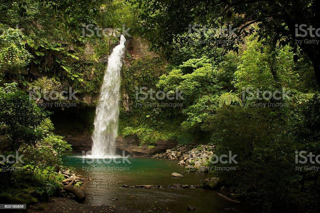 Waterfall in a Fijian jungle stock photo