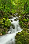 Waterfall in a lush gorge in Slovensky Raj, Slovakia