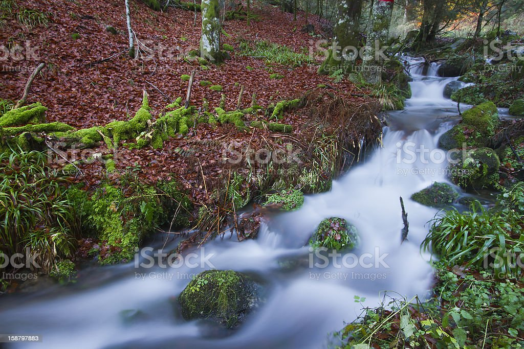 Waterfall in autumn forest Vosges France royalty-free stock photo