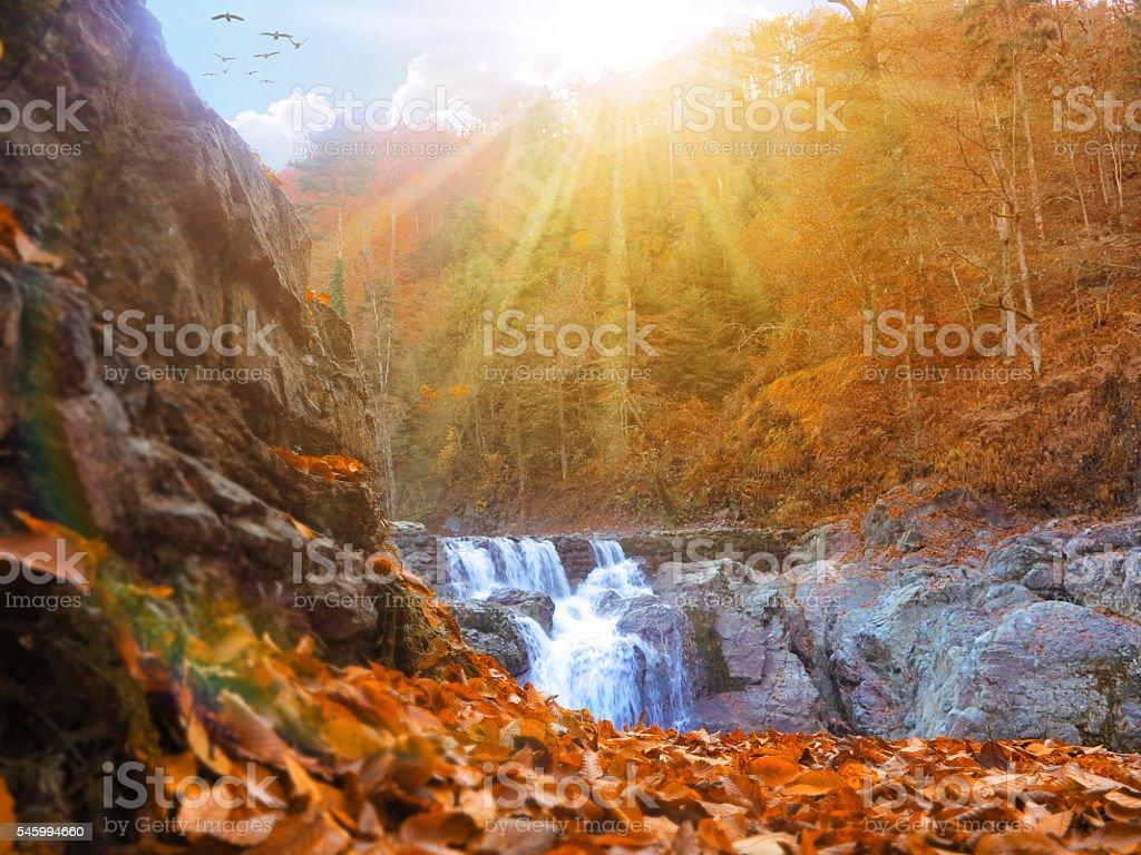 Waterfall in Autumn stock photo