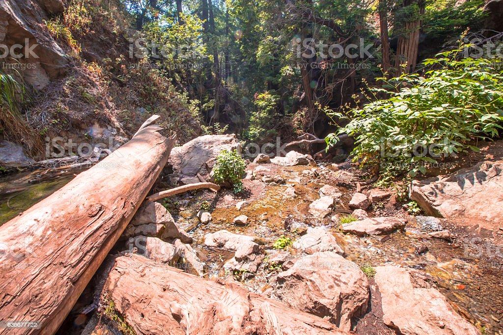 Waterfall in bigsur stock photo