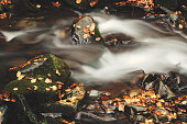 waterfall in blurring with leaves