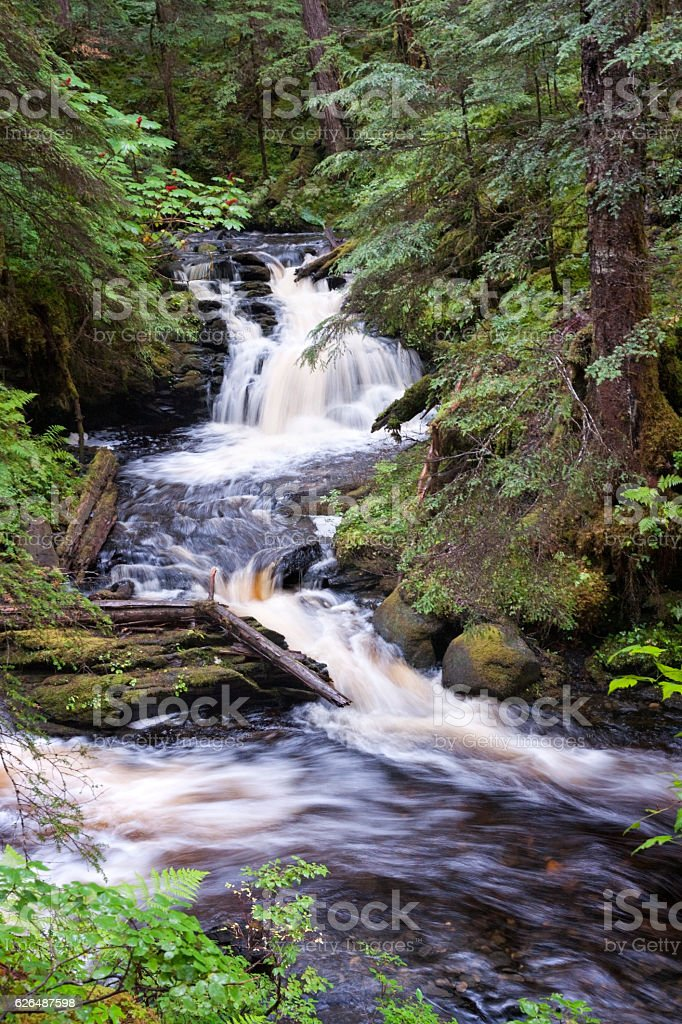 Waterfall in creek in Tongass National Forest stock photo