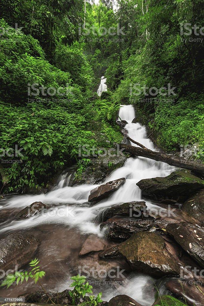 Wasserfall im tiefen Wald von Thailand Lizenzfreies stock-foto