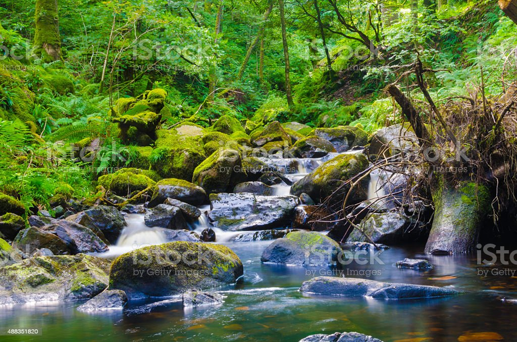 Waterfall in forest background stock photo
