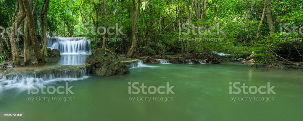 Waterfall in forest stock photo