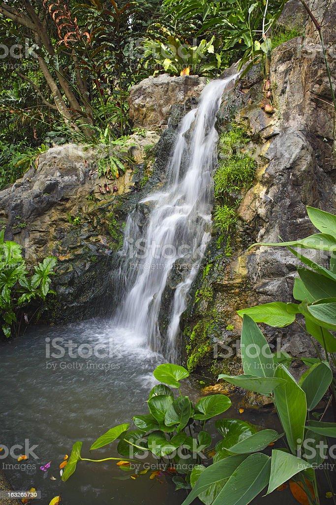 Waterfall in garden royalty-free stock photo