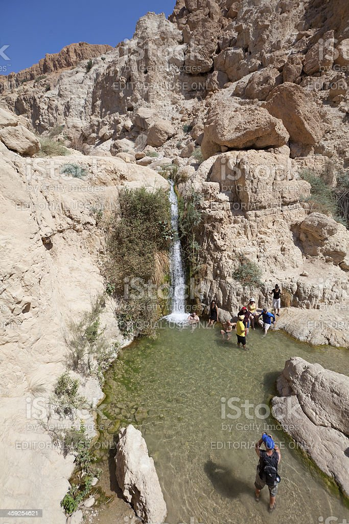 Waterfall in National park Ein Gedi, Israel stock photo