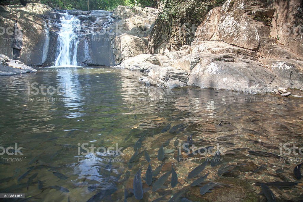 Waterfall in National Park , Prachuapkhirikhan Province , Thaila stock photo