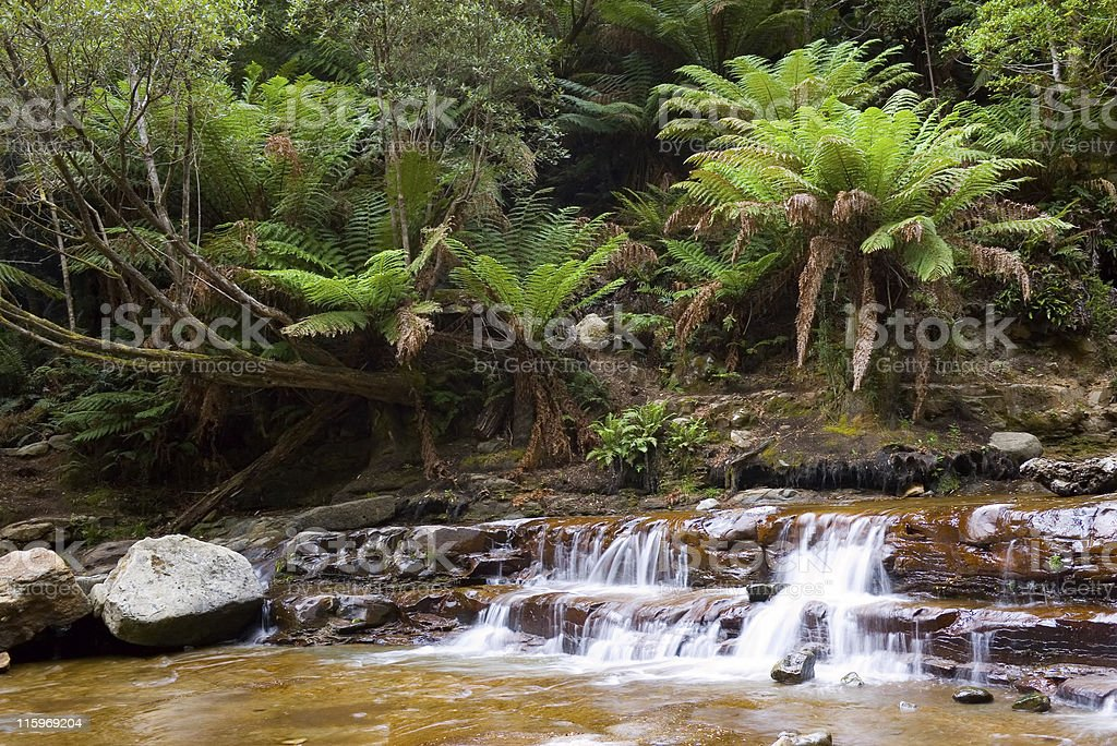Waterfall in Rainforest royalty-free stock photo