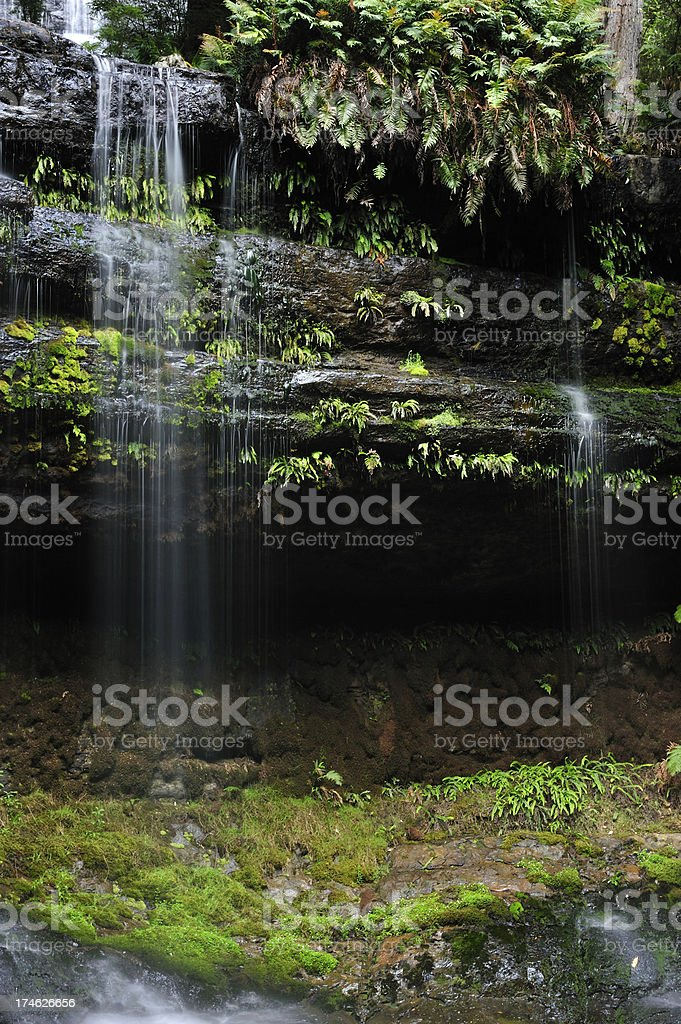 waterfall in rainforests stock photo