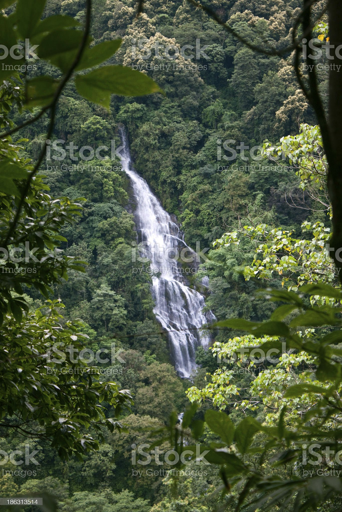 Waterfall in Sikkim royalty-free stock photo
