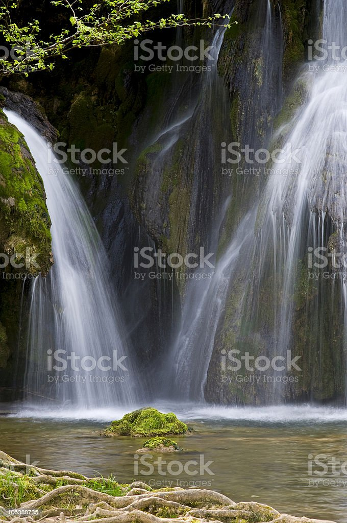 Waterfall in spring green forest royalty-free stock photo