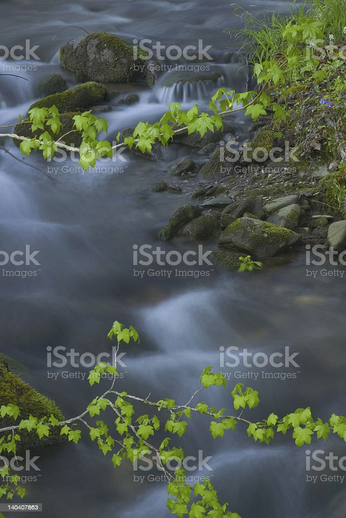 Waterfall in Spring royalty-free stock photo