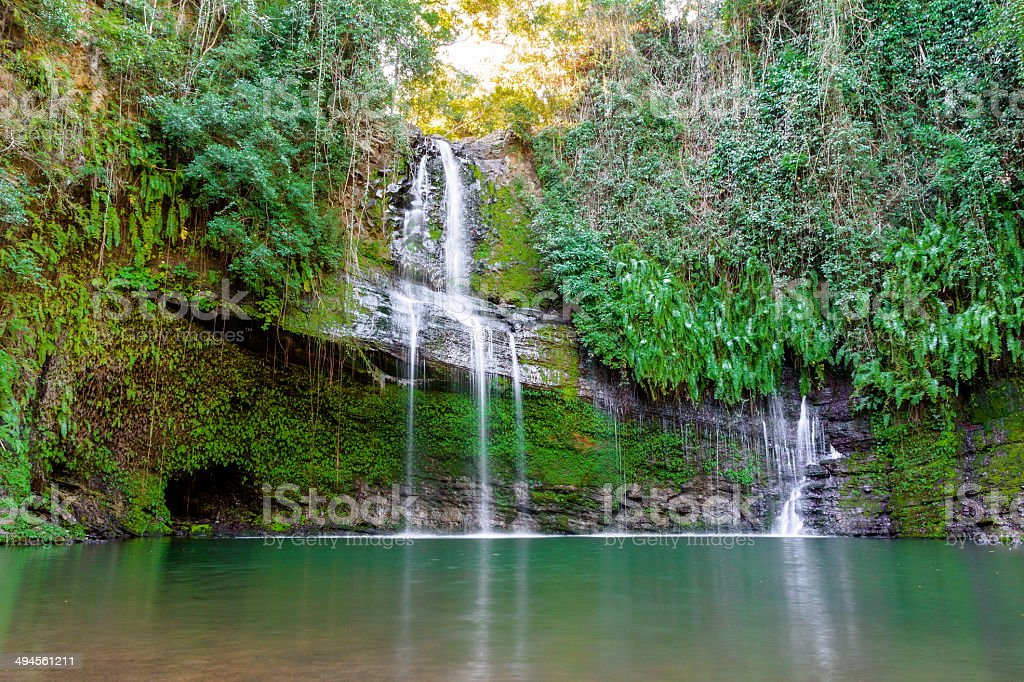 Waterfall in the forest. stock photo