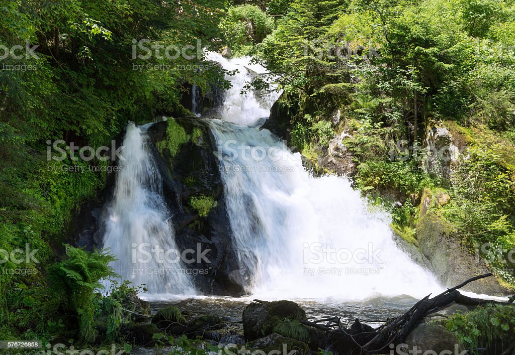 Waterfall in the forest stock photo