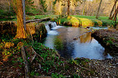 Waterfall in the marsh
