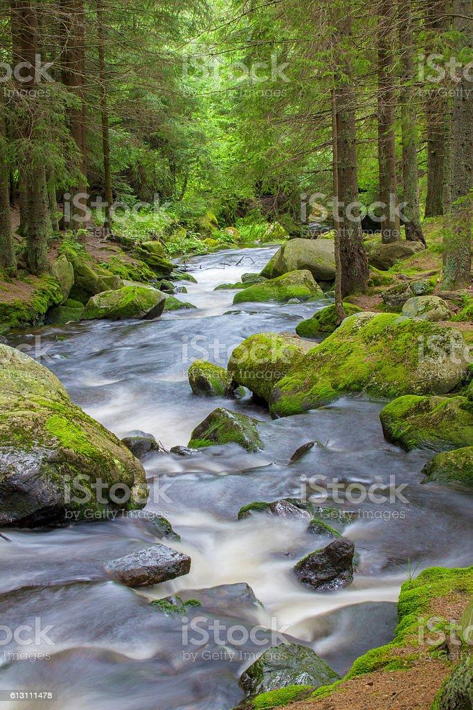Waterfall in the national park Sumava-Czech Republic stock photo