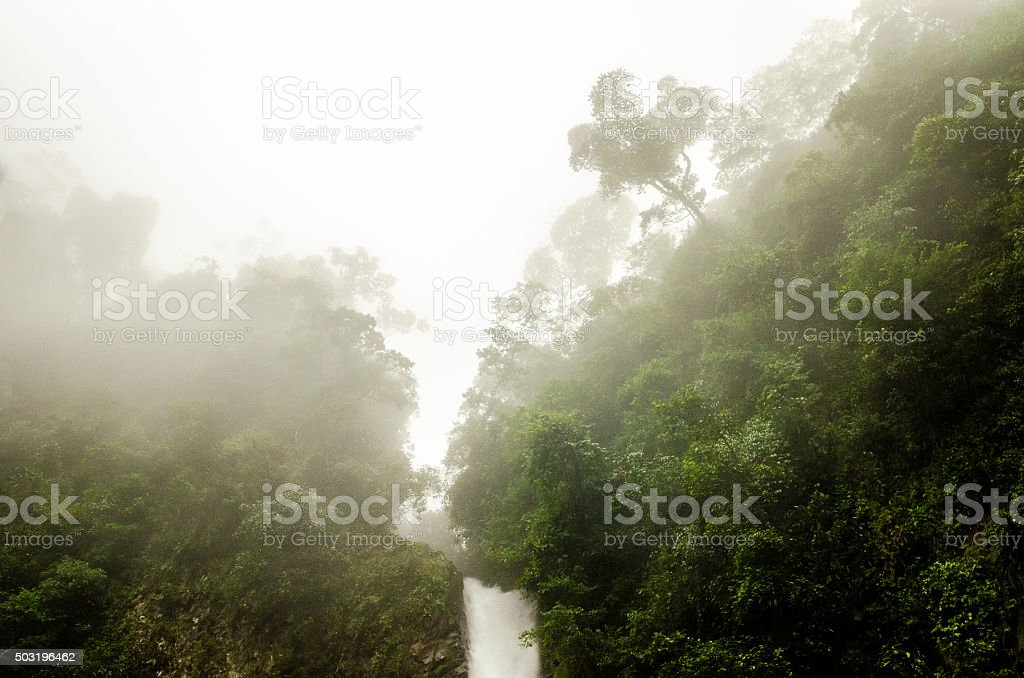 Waterfall in the Rainforest Clouds stock photo
