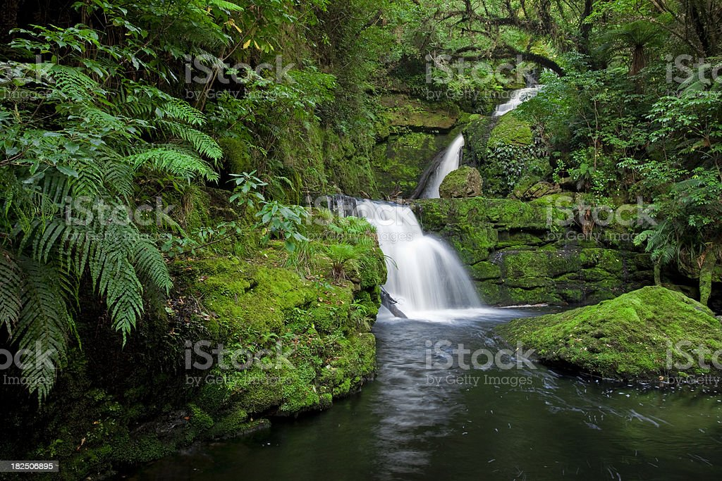 Waterfall in the rainforest, New Zealand royalty-free stock photo