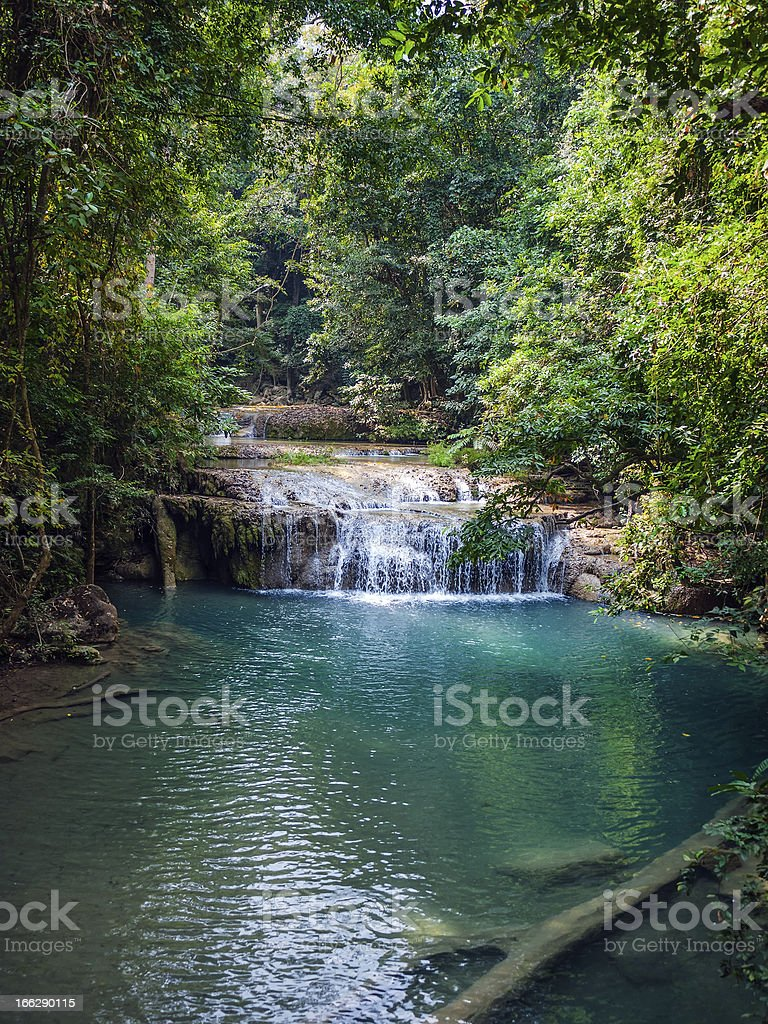 Waterfall in the rainforest. royalty-free stock photo
