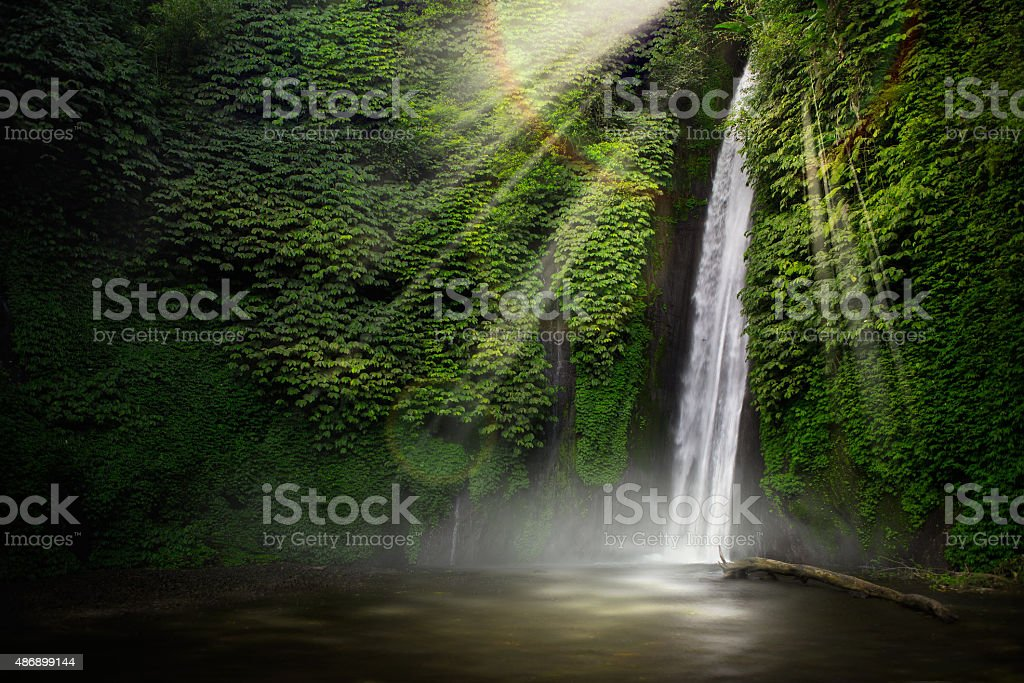 Waterfall in the tropical forest. (Munduk, Bali, Indonesia.) stock photo