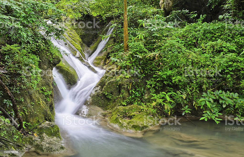 Waterfall in tropical rain forest royalty-free stock photo