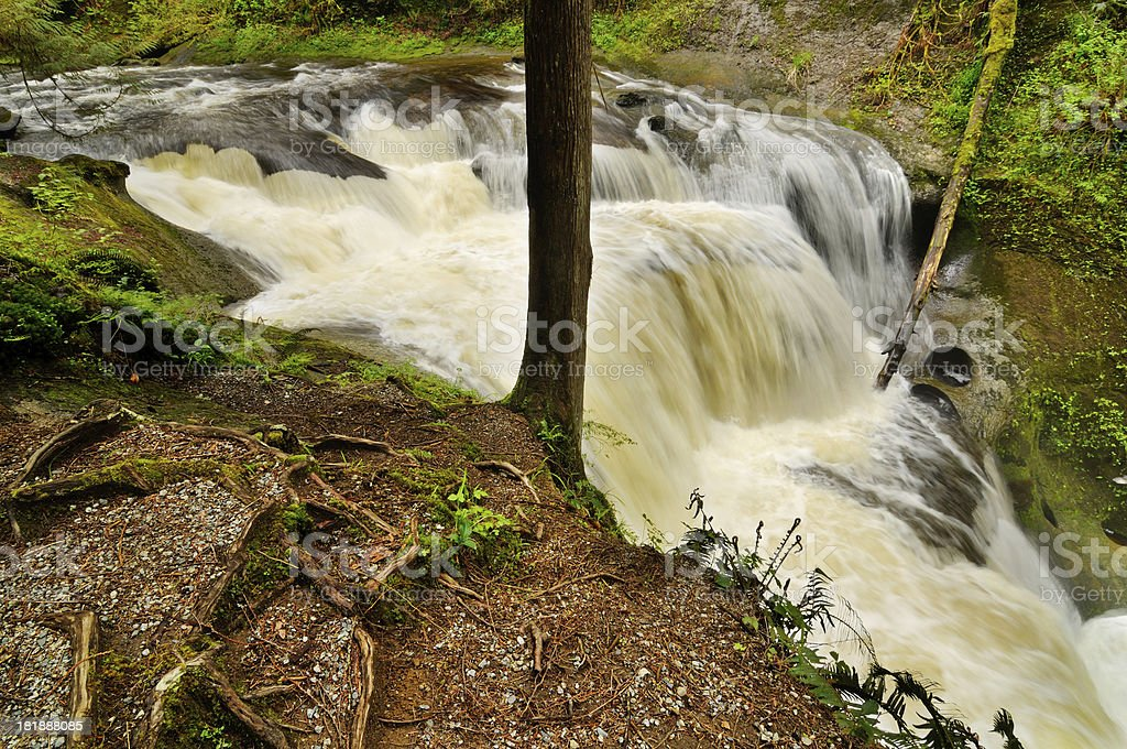 Waterfall in Vancouver area, Canada royalty-free stock photo