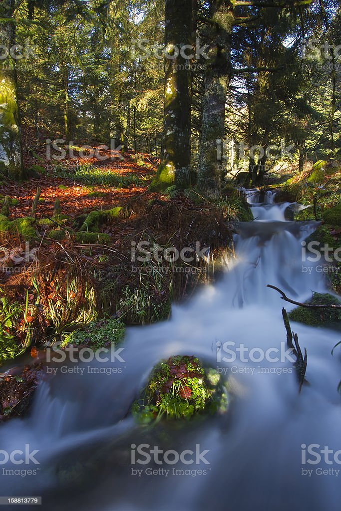 Waterfall Lively autumn color forest Vosges France royalty-free stock photo