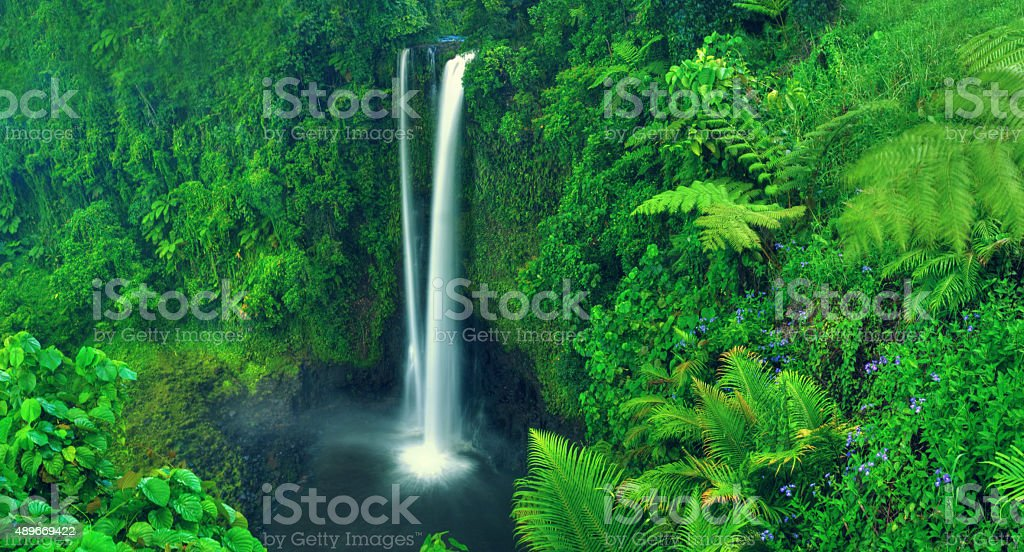 Waterfall Nature Scenics Waterfall Forest Concept stock photo