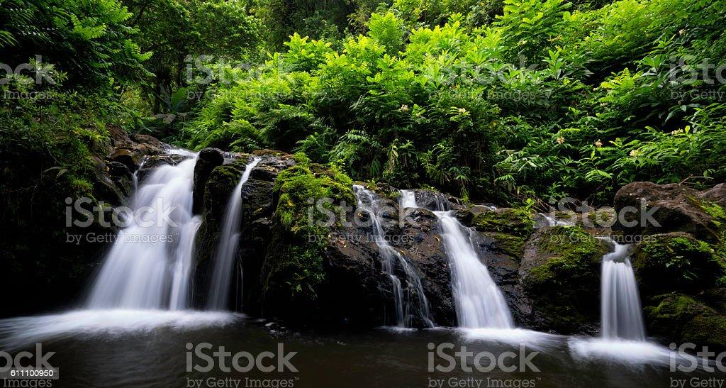 Waterfall on Road to Hana. stock photo