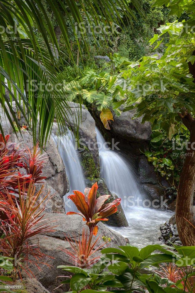 Waterfall on the Big Island of Hawaii stock photo