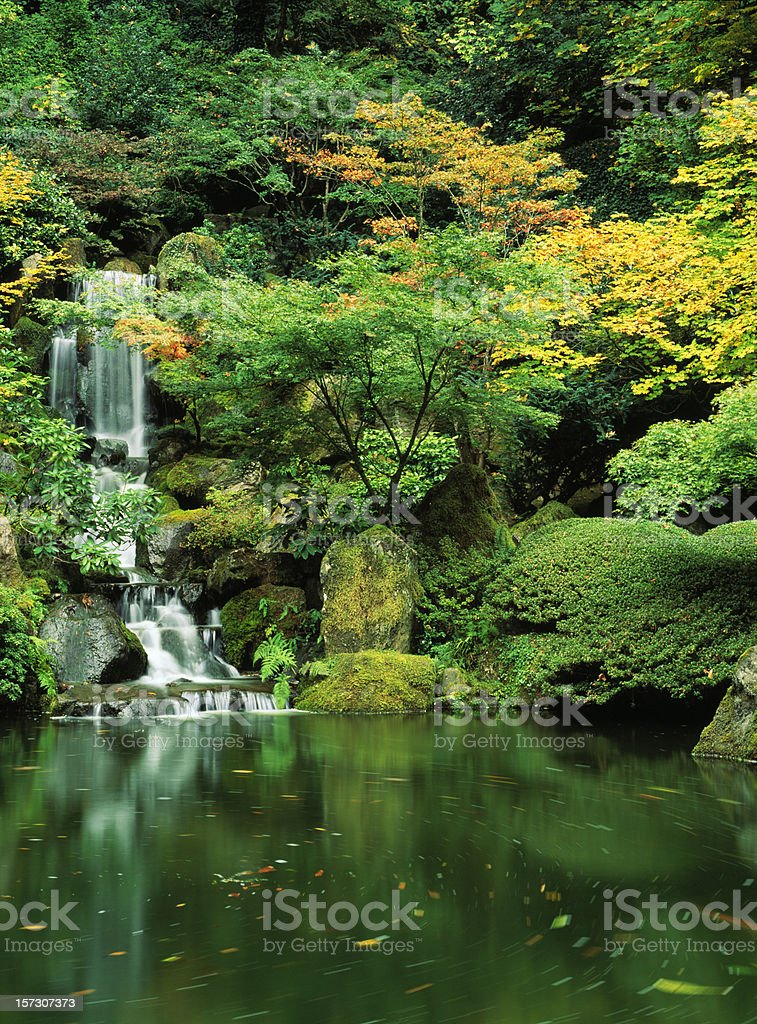 Waterfall, Pond, Reflection, Fall Colors, Foliage, Tranquil, Vivid, Zen-Like royalty-free stock photo