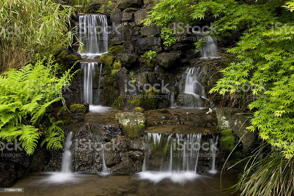 Waterfall surrounded by lush foliage in landscaped garden royalty-free stock photo