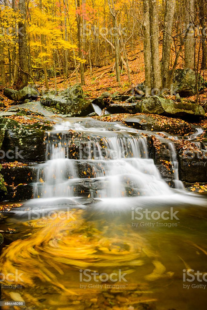 XXXL: Waterfall with autumn leaves spiraling in the flowing wate stock photo