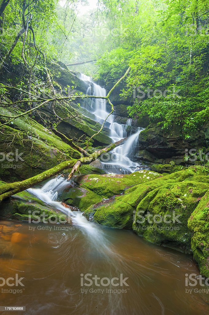 Waterfall with green moss. royalty-free stock photo