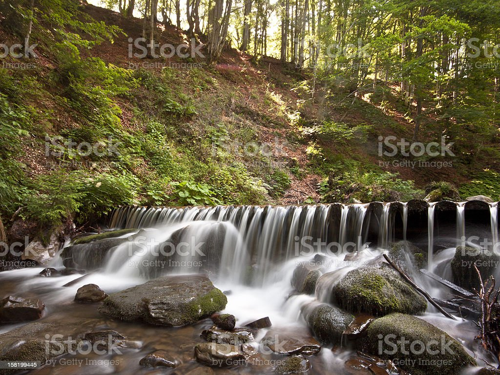 Waterfall with stones in the forest. stock photo