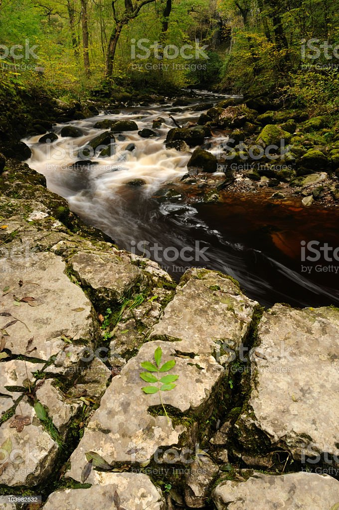 Waterfalls in Forest royalty-free stock photo