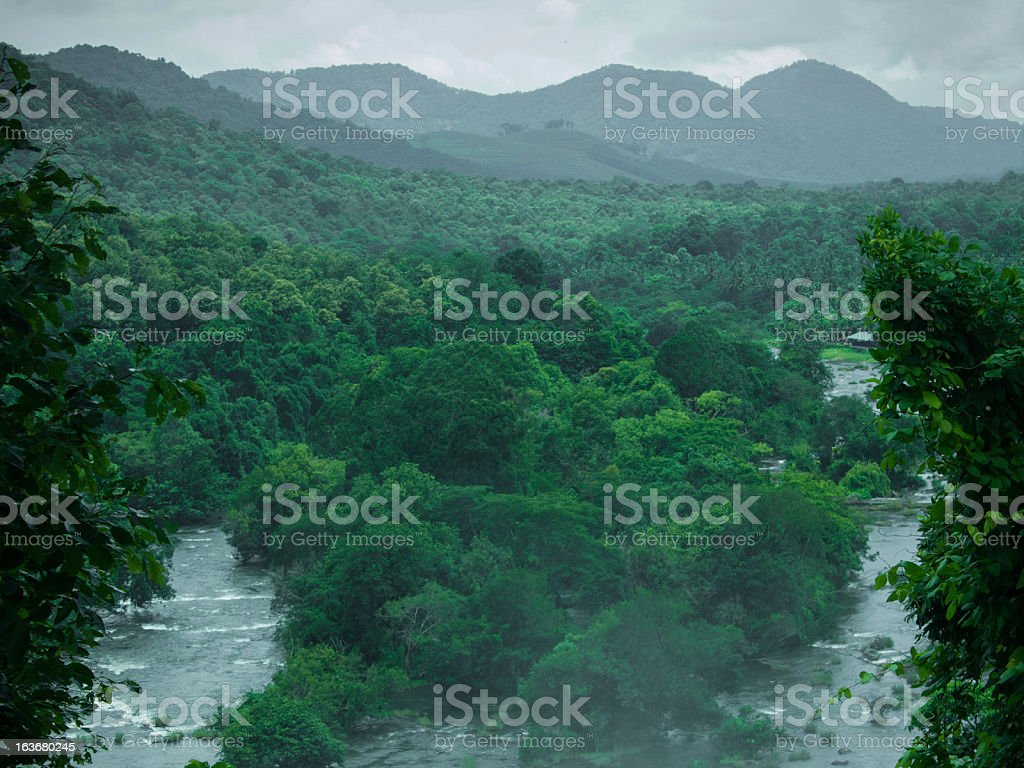 Waterfalls inside the Forest stock photo
