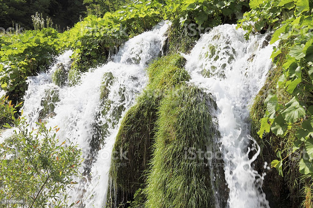 waterfalls with streaming water through green leaves Plitvice Croatia royalty-free stock photo