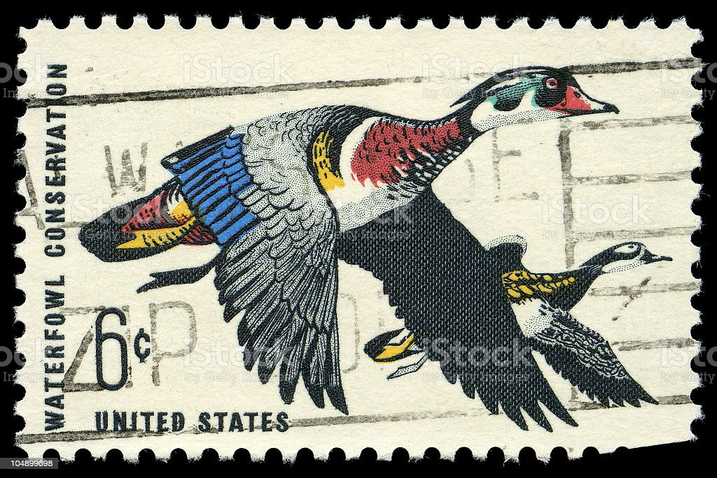 Waterfowl Conservation Issue Stamp of 1968 stock photo