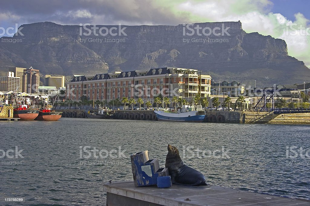 Waterfront Capetown royalty-free stock photo