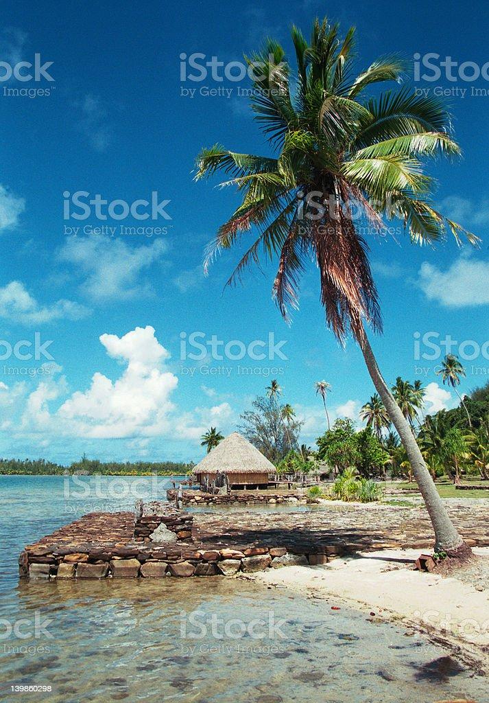 Waterfront on a Polynesian island in Tahiti royalty-free stock photo