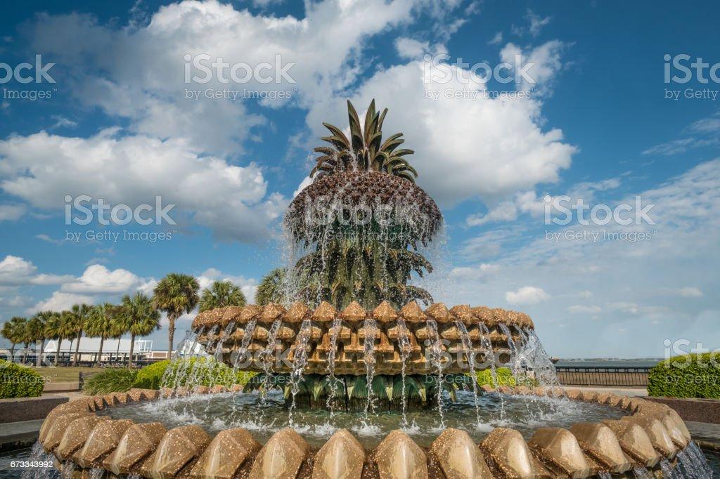 Waterfront Park  Cooper River in Charleston, SC, USA stock photo