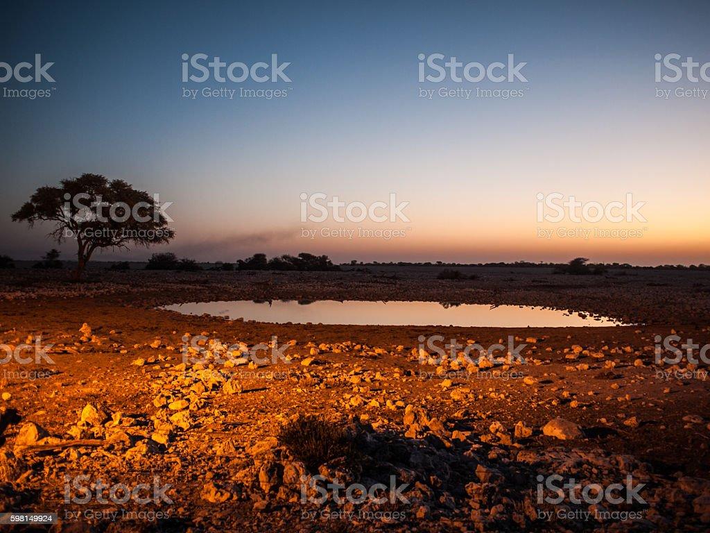 Waterhole 2 stock photo