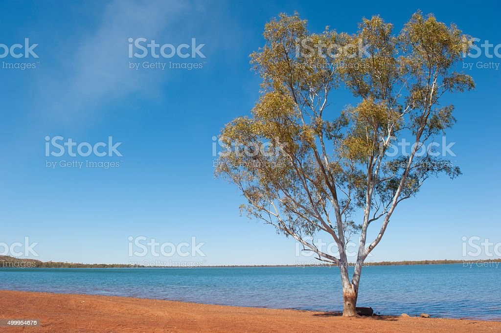Waterhole Australian outback stock photo