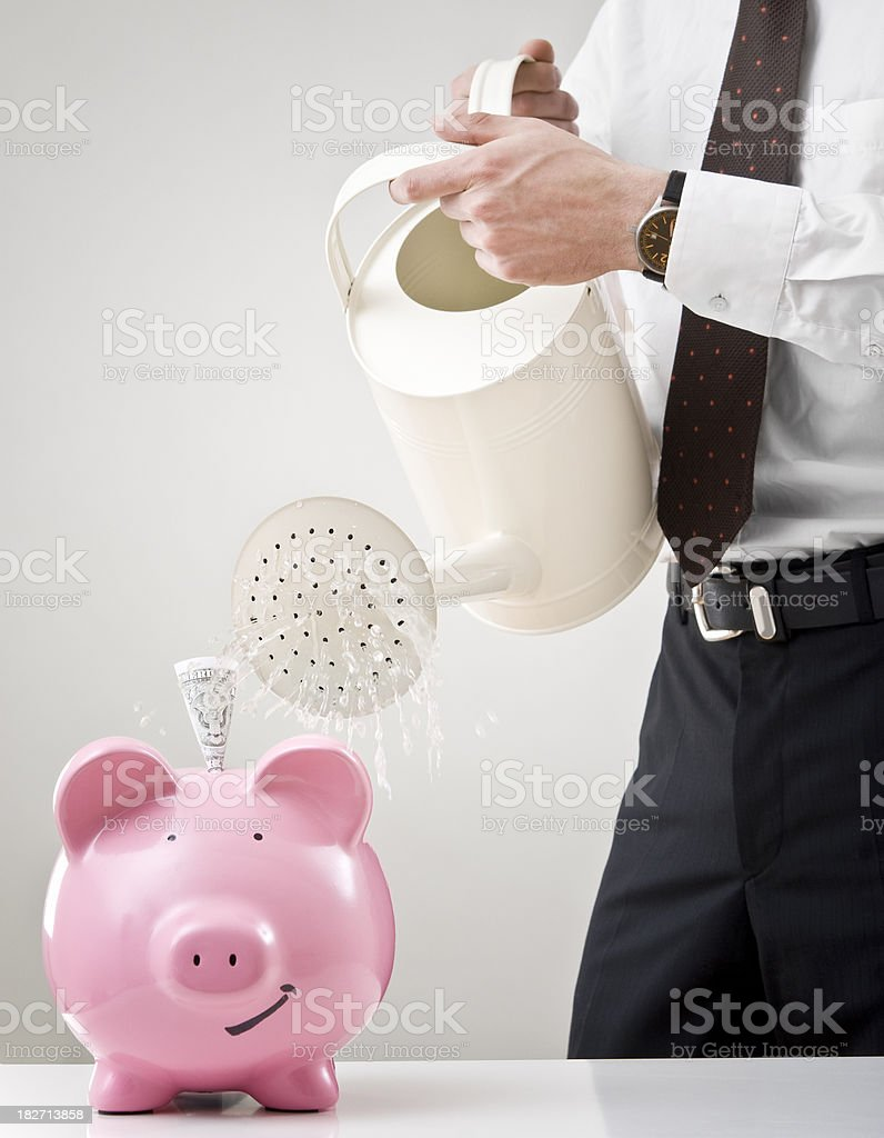 Watering a Piggy Bank royalty-free stock photo