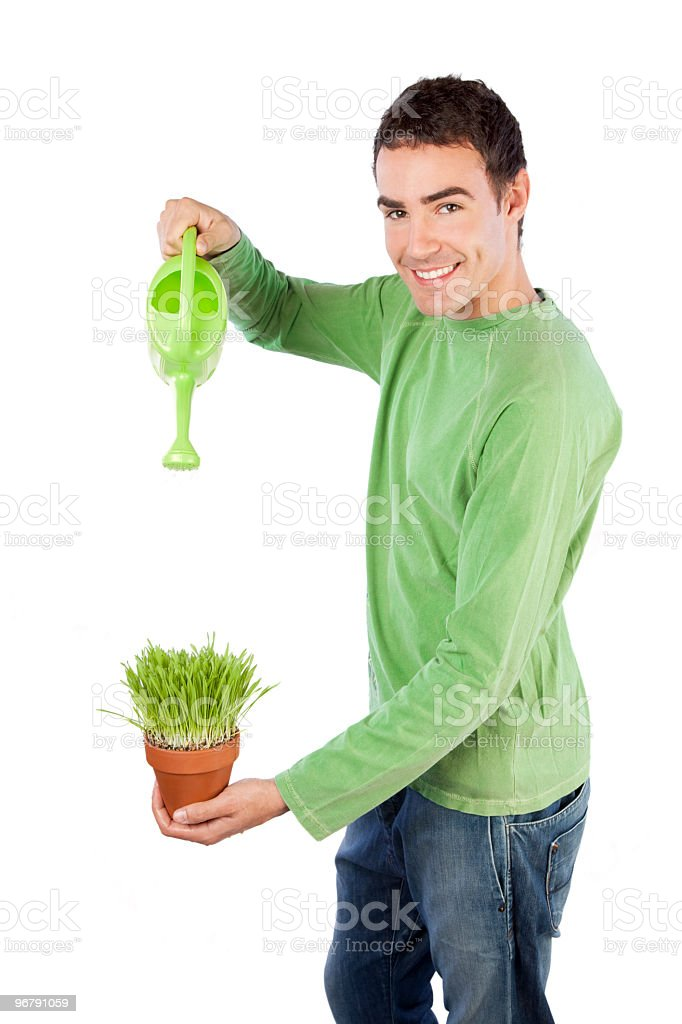 Watering a plant royalty-free stock photo